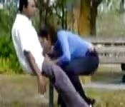 Boquete no parque