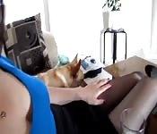 Sexy Büro Babe in Strumpfhose