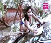 Lavage de voiture cochone