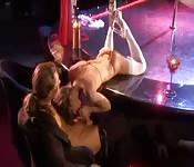 Stripperin unterbrickt Tanz für Sex