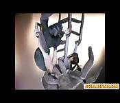 3D-Animation mit einem Girl, das von einem Spinnenmonster gefangen und hart gefickt wird