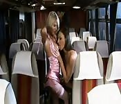 O ônibus do sexo