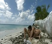 Luna de miel y sexo en el caribe