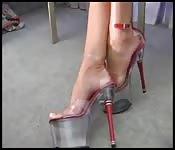Aos pés de Carmen Rivera