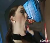 Una donna di classe prende un cazzo nero e succhia un bianco