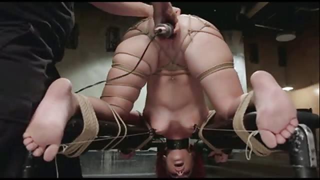 beste gratis bondage pornosider hardcore sex sex